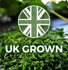 UK grown herbs and spices